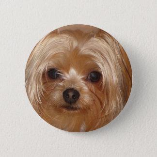 Yorkie Botton Pinback Button