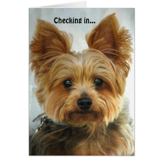 Yorkie - Checking in Greeting Card