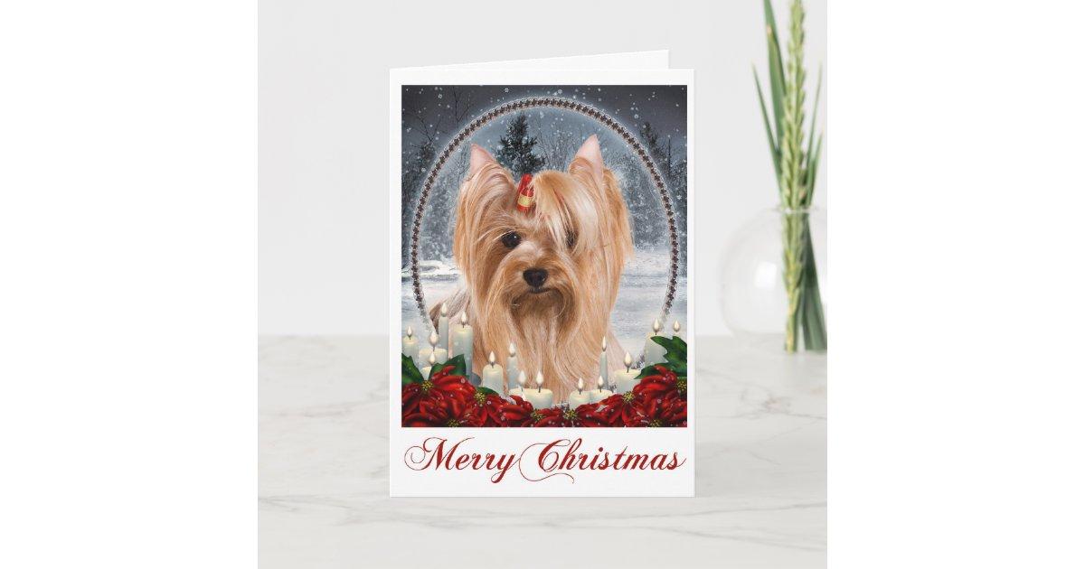 Yorkie Christmas Card | Zazzle.com