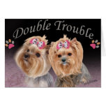Yorkie Double Trouble Cards