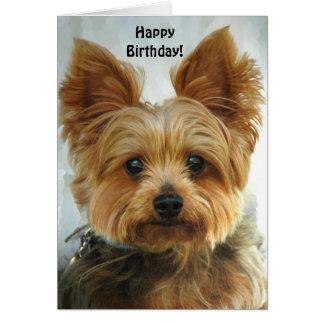 Yorkie - feliz cumpleaños tarjeta de felicitación