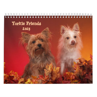 Yorkie Friends 2013 Calendar