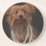 Yorkie in Pearl Necklace Drink Coaster