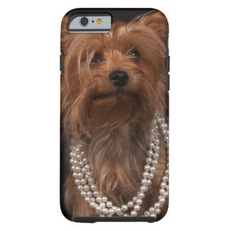 Yorkie in Pearl Necklace iPhone Case
