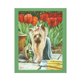 Yorkie in the Tulips Canvas Print