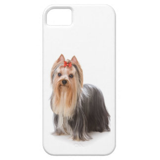 Yorkie iPhone Case iPhone 5 Cases