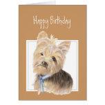 Yorkie lindo, Yorkshire Terrier, perro, mascota Felicitaciones