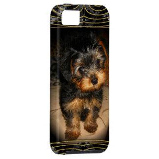 Yorkie Love iPhone SE/5/5s Case