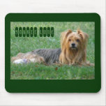 Yorkie Love.. Mouse Pads