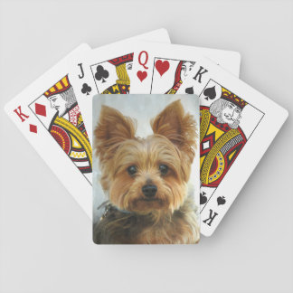 Yorkie luck playing cards