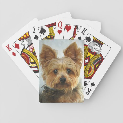 Zazzle Yorkie luck Playing Cards