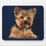 "yorkie mouse pad<br><div class=""desc"">Fun mousepad with an adorable Yorkie puppy.  Great for those Yorkie or animal lovers&#39; desk space.</div>"