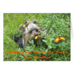 Yorkie Note Cards-Anything You Can Do My Yorkie