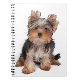 Yorkie Notebook