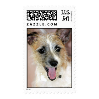 Yorkie/Parson Russell Terrier Postage Stamps