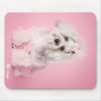 Yorkie-poo pink - pet photography -dog mouse pad