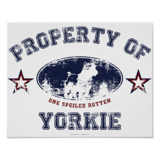 Yorkie Print
