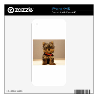 Yorkie Products Decal For iPhone 4