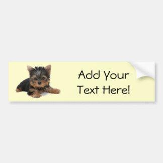 Yorkie Pup Bumper Sticker