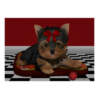 Yorkie Pup - 'The Collar' - Art/Poster XL Poster