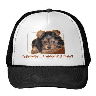 """Yorkie puppy... a whole lotta """"cute""""! trucker hat"""