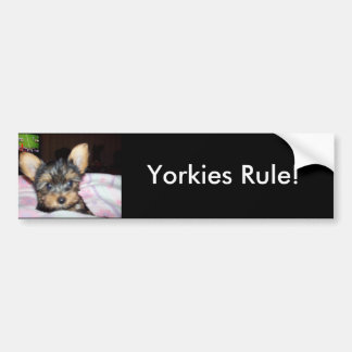 Yorkie Puppy Dog Lover Gifts Bumper Sticker