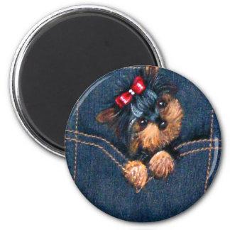 Yorkie Puppy in Pocket Magnet