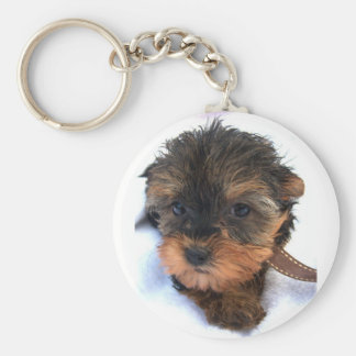 Yorkie Puppy Keychain