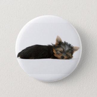 Yorkie Puppy Sleeping Button