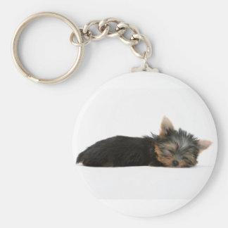 Yorkie Puppy Sleeping Keychain