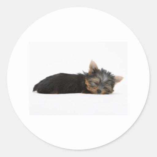Yorkie Puppy Sleeping Stickers