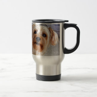 yorkie puppy waiting for mom and love travel mug