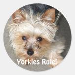 ¡Yorkie, regla de Yorkies! Etiquetas Redondas