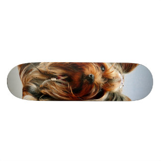 Yorkie Skateboard