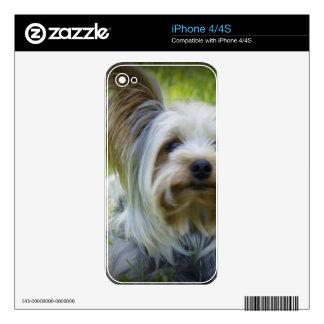Yorkie iPhone 4 Decals