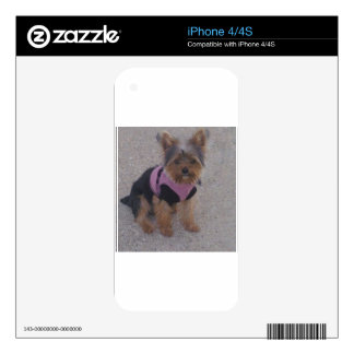 Yorkie Skin For iPhone 4S