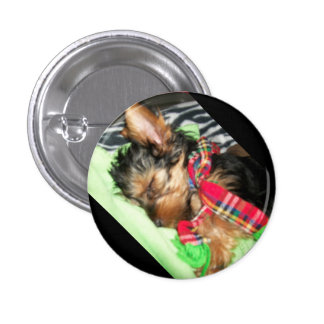 Yorkie Snuggle Button