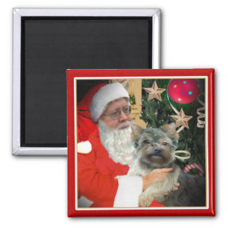 Yorkie Takes Pic with Santa Magnet