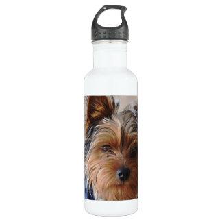 Yorkie Terrier 24oz Water Bottle