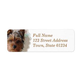 Yorkie Terrier  Mailing Label Return Address Label