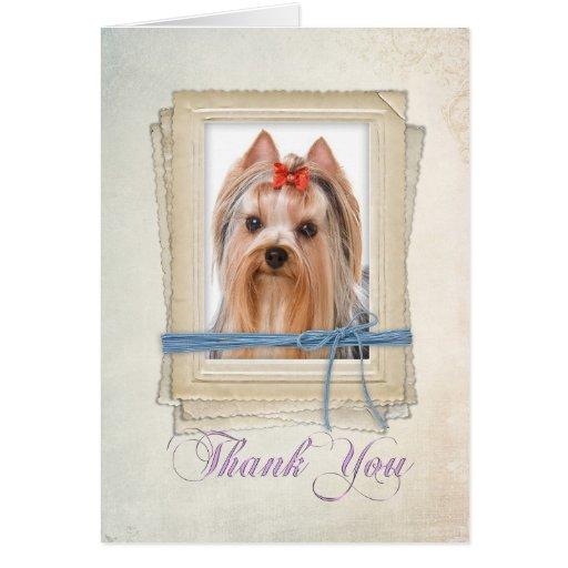 Zazzle Yorkie Thank You Card
