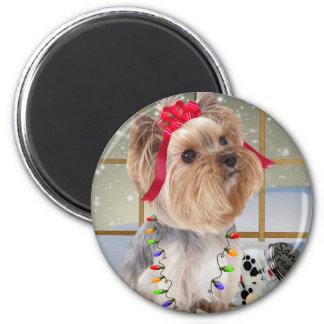 Yorkie Watches For Santa Magnet