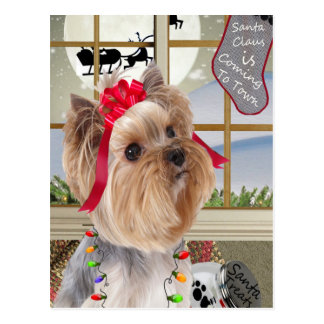 Yorkie Watches For Santa Postcard