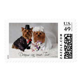Yorkie Wedding Dreams Can Come True Postage