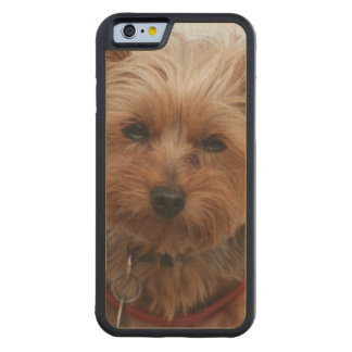 Yorkie Carved® Maple iPhone 6 Bumper