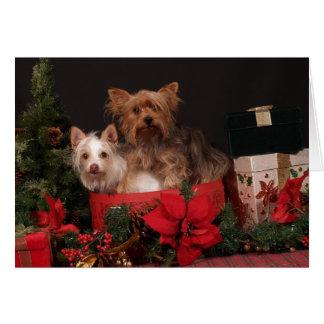 Yorkie y navidad de los amigos tarjeta de felicitación