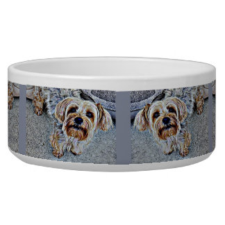 Yorkie Yorkshire Terrier Colored Bowl