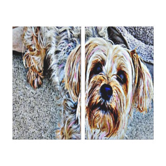 Yorkie Yorkshire Terrier Colored Canvas Print