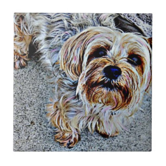 Yorkie Yorkshire Terrier Colored Ceramic Tile