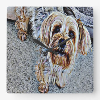 Yorkie Yorkshire Terrier Colored Square Wall Clock